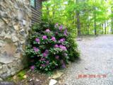 8812 Supinlick Ridge - Photo 10