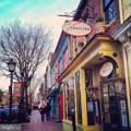 705 Pitt Street - Photo 45