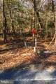 Lot 4 Holly Springs Road - Photo 3