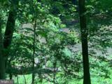 16 Creekside - Photo 16