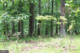 24 Dove Trail - Photo 4