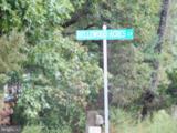 Lot 8H Bellewood Acres Lane - Photo 4
