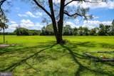29482 Vines Creek Road - Photo 16