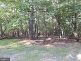 103A Sideling Mountain Trail - Photo 4