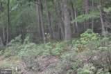 Big Horn Tr & Mountain Lion Ln - Photo 11