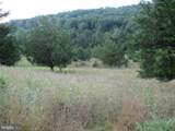 357 Scarlet Oak Circle - Photo 134