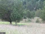 357 Scarlet Oak Circle - Photo 135