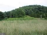 357 Scarlet Oak Circle - Photo 136
