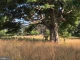 357 Scarlet Oak Circle - Photo 54