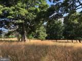 357 Scarlet Oak Circle - Photo 61