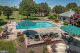 26035 Hunting Creek Lane - Photo 44