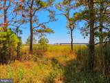 37501 Dirickson Creek Road - Photo 5