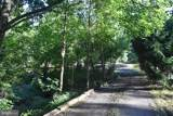 243 Second Mountain Road - Photo 5