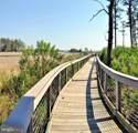 33258 Wading Duck Drive - Photo 61