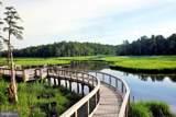 33258 Wading Duck Drive - Photo 62