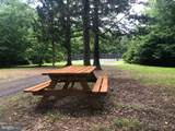 5507 Dogwood Tree Lane - Photo 12