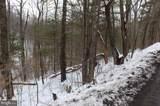 TBD Lake View Drive - Photo 5