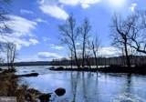 Beech Island - Photo 5