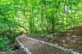 2704 Falling Timber Trail - Photo 5