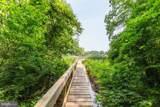 2704 Falling Timber Trail - Photo 6