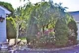 920 Cypress Street - Photo 54