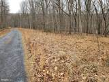 4.82 ACRES MAYNARD Drive - Photo 11