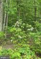 33150 Hummingbird Lane - Photo 53