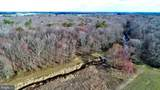 230 Acres Gallo Road - Photo 10