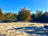 1611 Beach Plum Drive - Photo 6