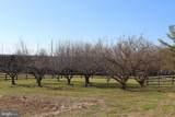 6641 Schoolhouse Road - Photo 41