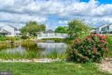 30932 Crepe Myrtle Drive - Photo 18
