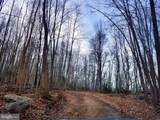 0 Bear Creek Road - Photo 7