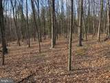 Little Cacapon Mountain - Photo 15