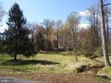 11616 Pine Tree Drive - Photo 10