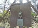 11616 Pine Tree Drive - Photo 24