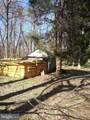 11616 Pine Tree Drive - Photo 26
