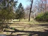 11616 Pine Tree Drive - Photo 28