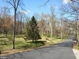 11616 Pine Tree Drive - Photo 5