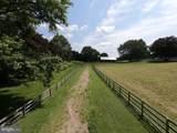 16743 Wesley Chapel Road - Photo 3
