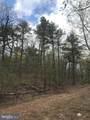 Mimosa Trail - Photo 1