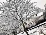 740 Kentland Drive - Photo 73