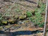 Cove Creek - Photo 13