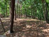 Davey Ridge Trail - Photo 12