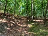 Davey Ridge Trail - Photo 13