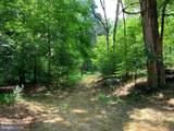 Davey Ridge Trail - Photo 15