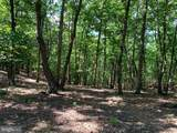Davey Ridge Trail - Photo 19