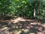 Davey Ridge Trail - Photo 20