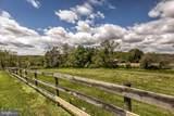 2600 Sams Creek Road - Photo 50