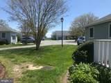 31109 Crepe Myrtle Drive - Photo 10
