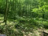 Gid Brown Hollow & Pointer Ridge Lane - Photo 8